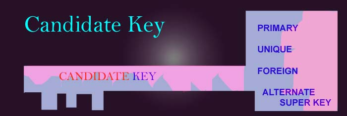 candidatekey-feature-img