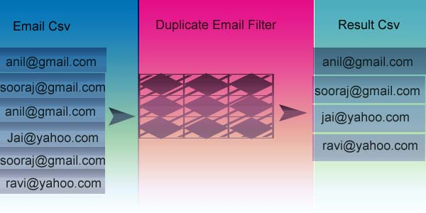 duplicate-email