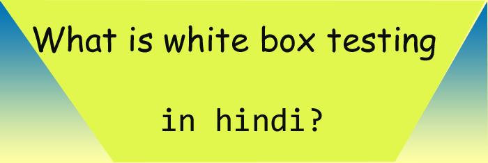 whiteboxtesting