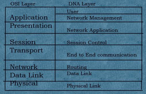 DNA-Layer-with-OSI