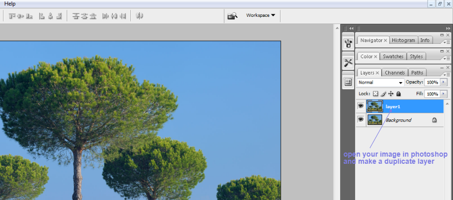 clean tree background in photoshop1