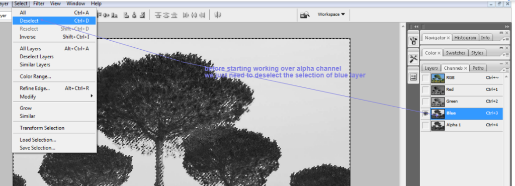 clean tree background in photoshop3