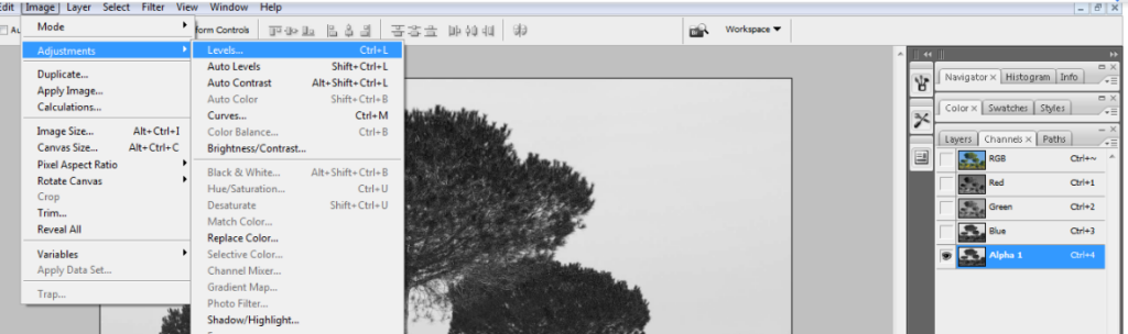 clean tree background in photoshop4