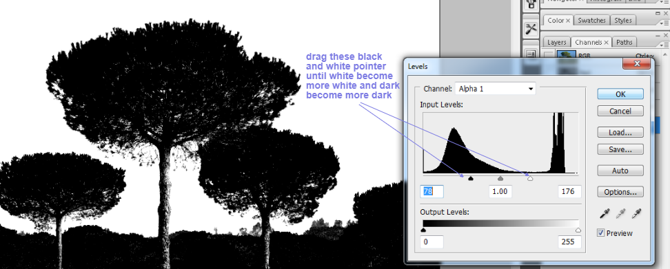 clean tree background in photoshop5