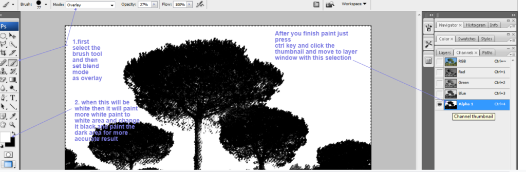 clean tree background in photoshop6