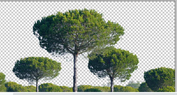 clean tree background in photoshop8