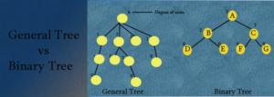 general tree vs binary tree feature img