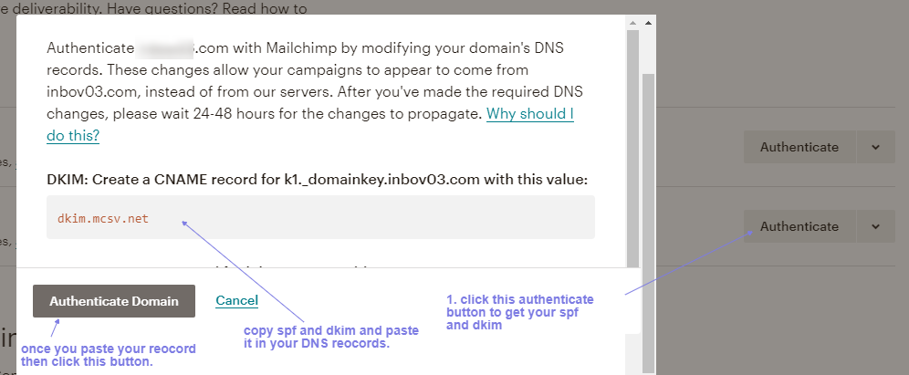 get real value for mailchimp dpf and dkim