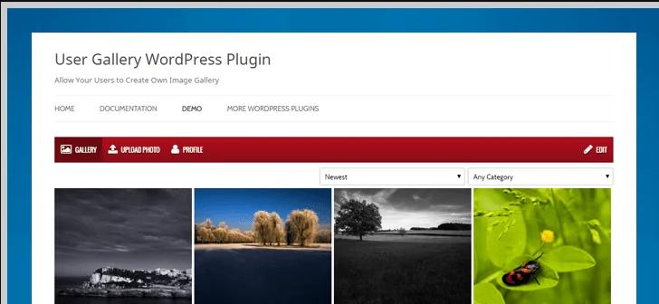 user gallery wordpress plugin