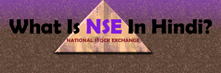 what is nse in hindi